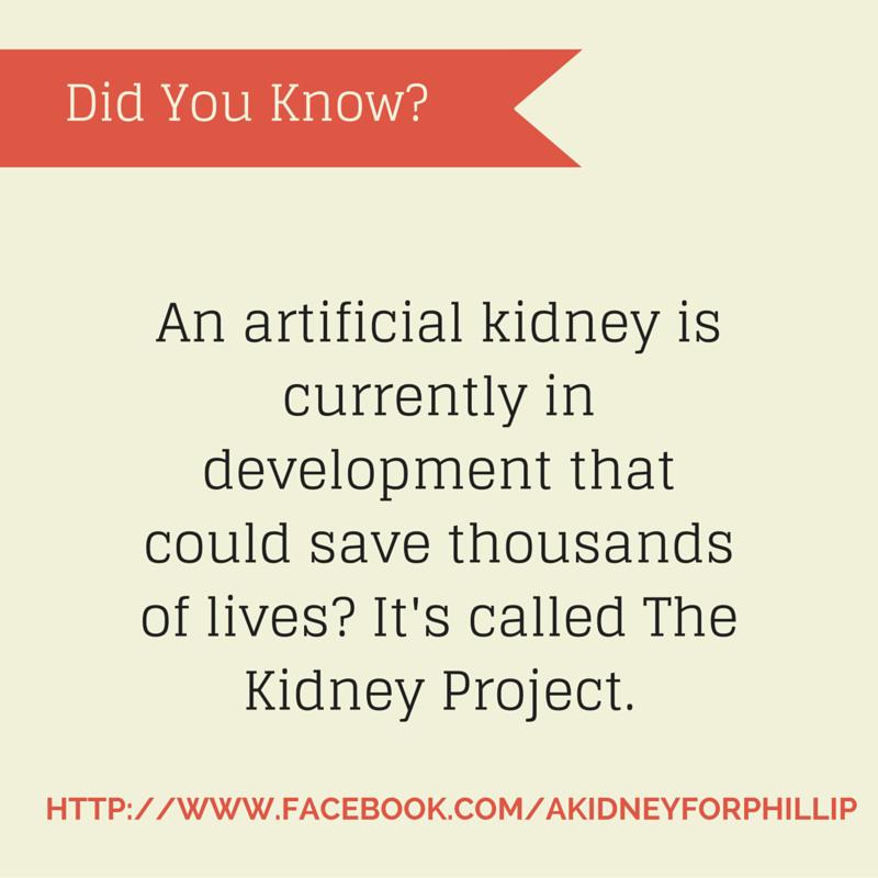 artificial kidney fact